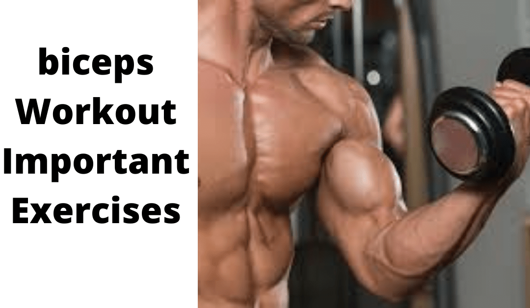 5 Best bicep workouts important exercises